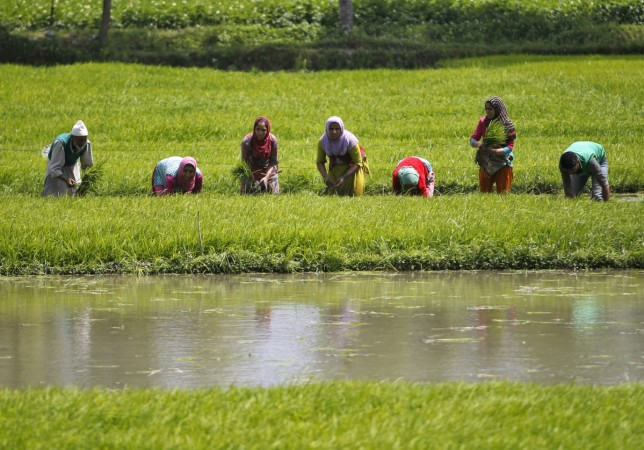 India GDP agriculture gdp estimate rural demand