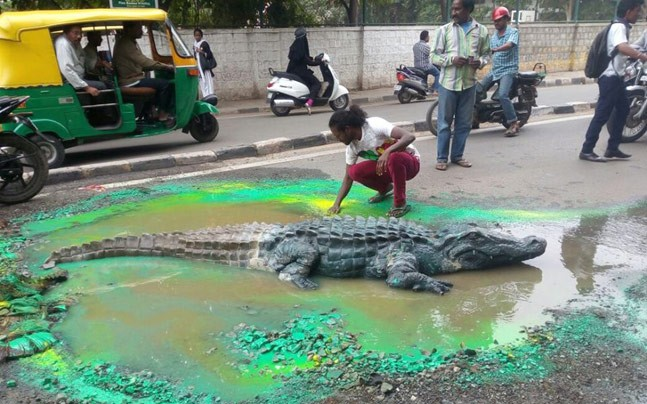 Bangalore artist makes Crocodile Swim,giant pothole,pothole,Crocodile,artist makes Crocodile Swim,Sulthanpalya,crocodile paint,pothole turns into crocodile pond