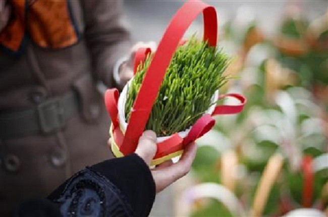 a woman buys a potted plant during new year shopping on a street near a bazaar
