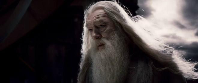 Michael Gambon as Albus Dumbledore