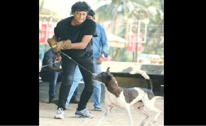 Boby Chemmanur booked for capturing stray dogs