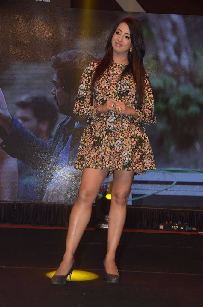 Sanjjanaa,actress Sanjjanaa,Sanjjanaa Archana Galrani,Sanjjanaa Galrani,Rogue audio launch,Rogue audio,Rogue,Rogue audio launch pics,Rogue audio launch images,Rogue audio launch photos,Rogue audio launch stills,Rogue audio launch pictures