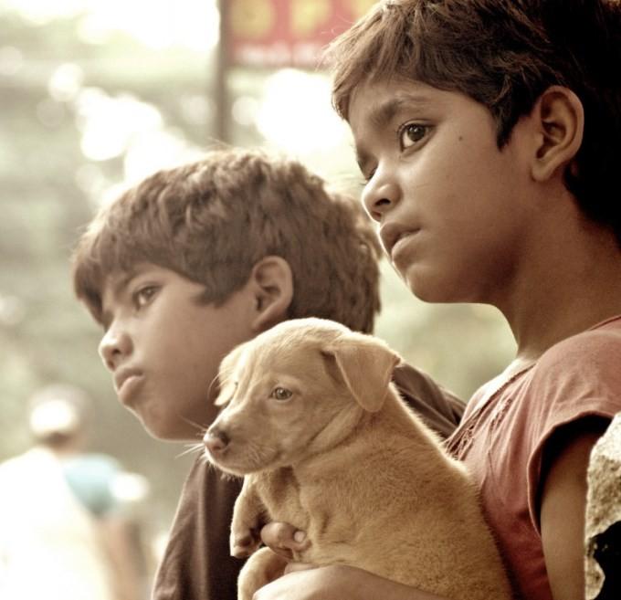 Kakka Muttai,tamil movie Kakka Muttai,Kakka Muttai Movie Stills,Kakka Muttai Movie pics,Kakka Muttai Movie images,Kakka Muttai Movie photos,Kakka Muttai Movie stills,dhanush,dhanush in Kakka Muttai,dhanush's Kakka Muttai