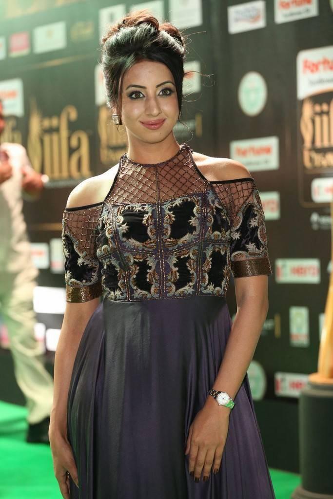 Sanjjanaa,actress Sanjjanaa,Sanjjanaa Galrani,actress Sanjjanaa Galrani,Sanjjanaa at IIFA Utsavam 2017,IIFA Utsavam 2017,IIFA Utsavam,IIFA Utsavam Awards 2017 Green Carpet