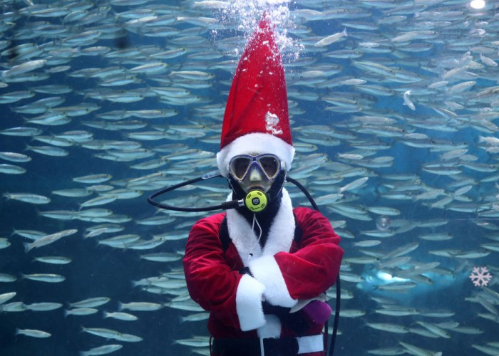 Santa Claus And The Fishes