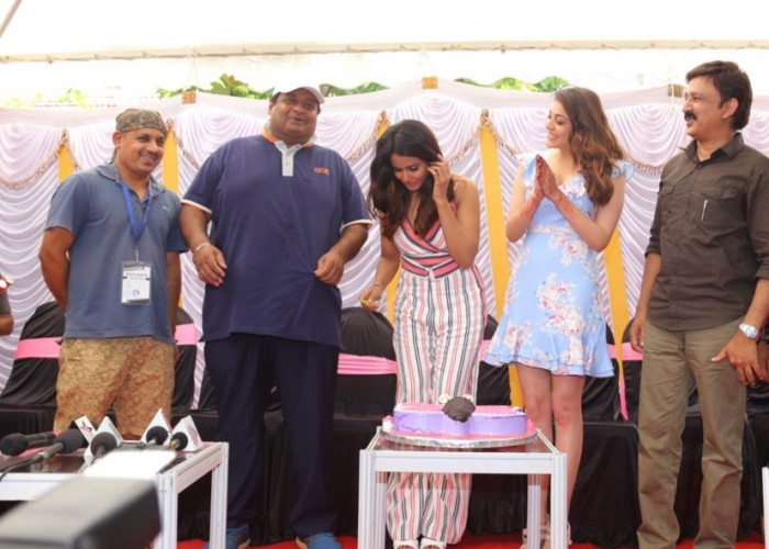 South Indian actress Parul Yadav celebrated her birthday with Actress Kajal Aggarwal, Tamannaah Bhatia and Ramesh Aravind on Queen sets in Mysore. The 2014 Hindi movie is being remade as