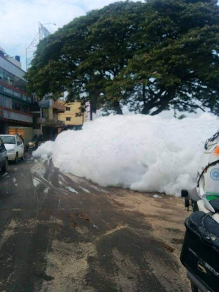 Bangalore varthur lake,varthur lake contamination,varthur lake foams