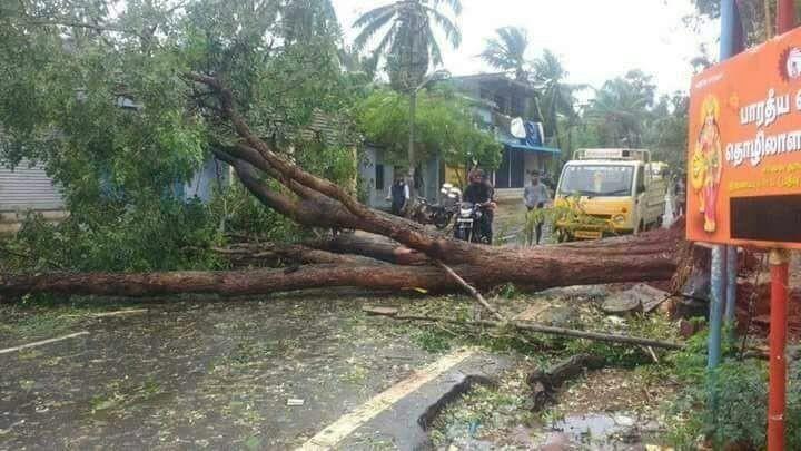 Cyclone Ockhi,Cyclone Ockhi kerala,Cyclone Ockhi in Kanyakumari,Cyclone,Cyclone in Kanyakumari,Kanyakumari,Kanyakumari rain