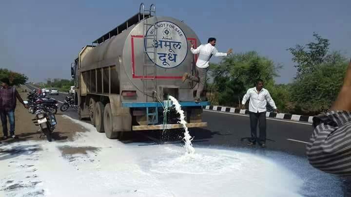 Ryots spill milk in Maharashtra