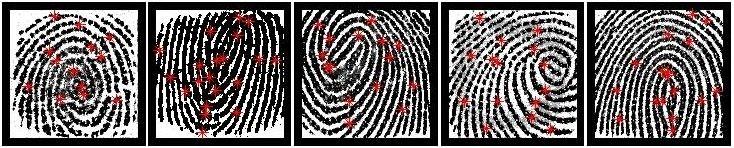 5 partial fingerprints that were selected as MasterPrints from a fingerprint data se