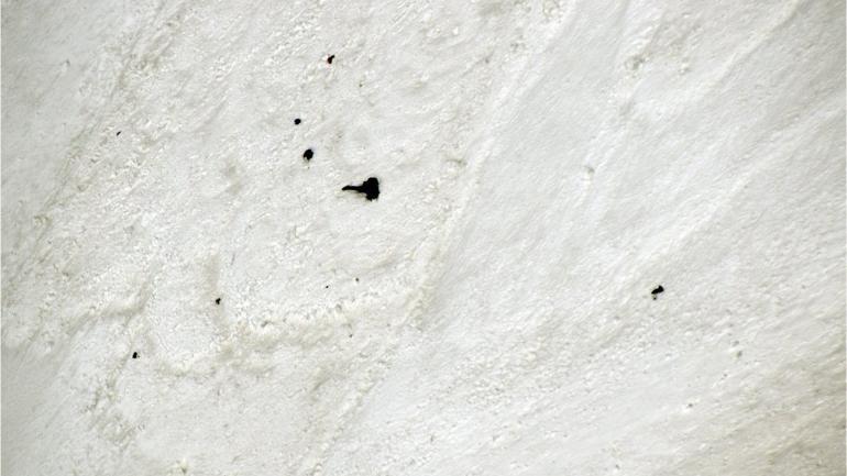 Nanda Devi East peak