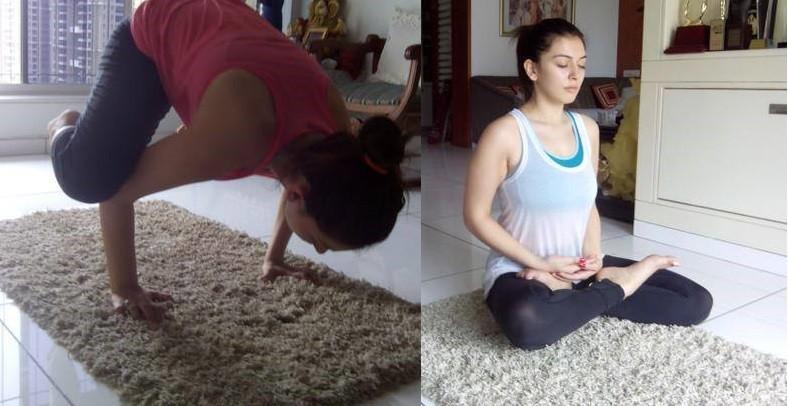 International yoga day,International yoga day 2016,celebs doing Yoga,South indian celebs doing Yoga,Kajal Aggarwal,Tamannaah,Anushka,Hansika,Amy Jackson,Anushka Shetty,Hansika Motwani,Ileana D'Cruz,Lissy,Mallika Sherawat,Shriya Saran