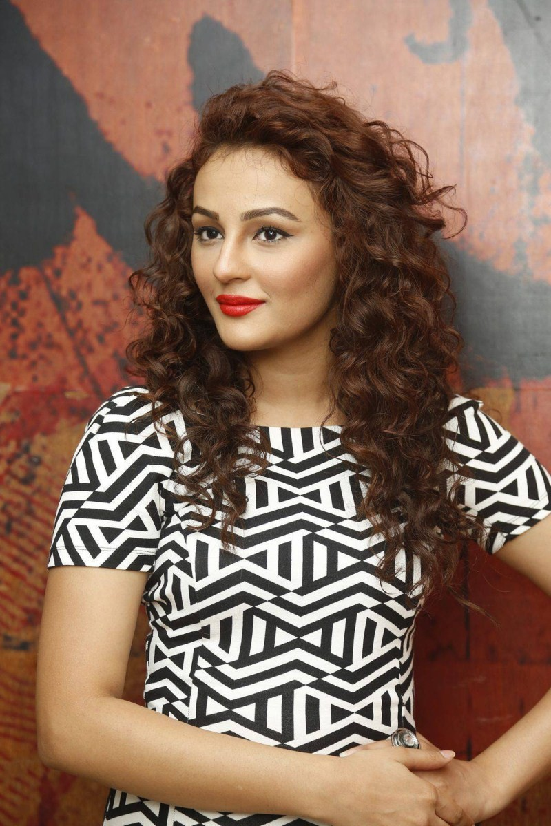 Seerat Kapoor,actress Seerat Kapoor,Seerat Kapoor Latest Photos,Seerat Kapoor Latest pics,Seerat Kapoor Latest images,Seerat Kapoor Latest stills,Seerat Kapoor Latest pictures,Seerat Kapoor at Tiger Movie Success Meet,Tiger Movie Success Meet