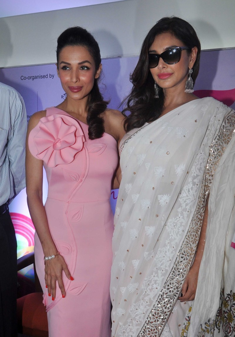 Malaika Arora Khan,Lisa Ray,Indian Breast Cancer Survivors Conference,Breast Cancer,Women's Cancer,Tata Memorial Hospital,Malaika Arora Khan and Lisa Ray