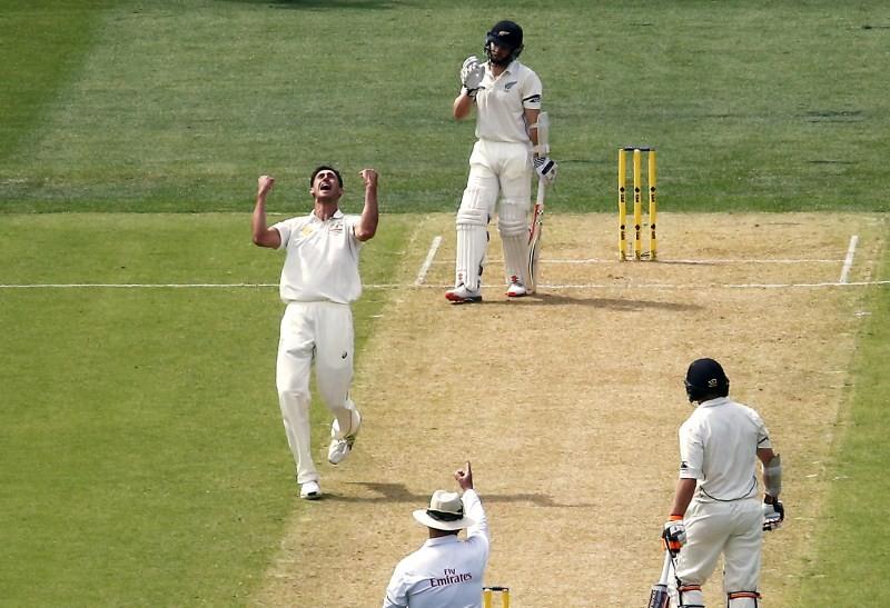 Australia v New Zealand,Australia vs New Zealand,Australia vs New Zealand 1st Day-Night Test,Australia vs New Zealand Historical Day-Night Test at Adelaide Oval,Australia vs New Zealand 2015,Australia Vs New Zealand Test Series,Australia vs New Zealand Pi
