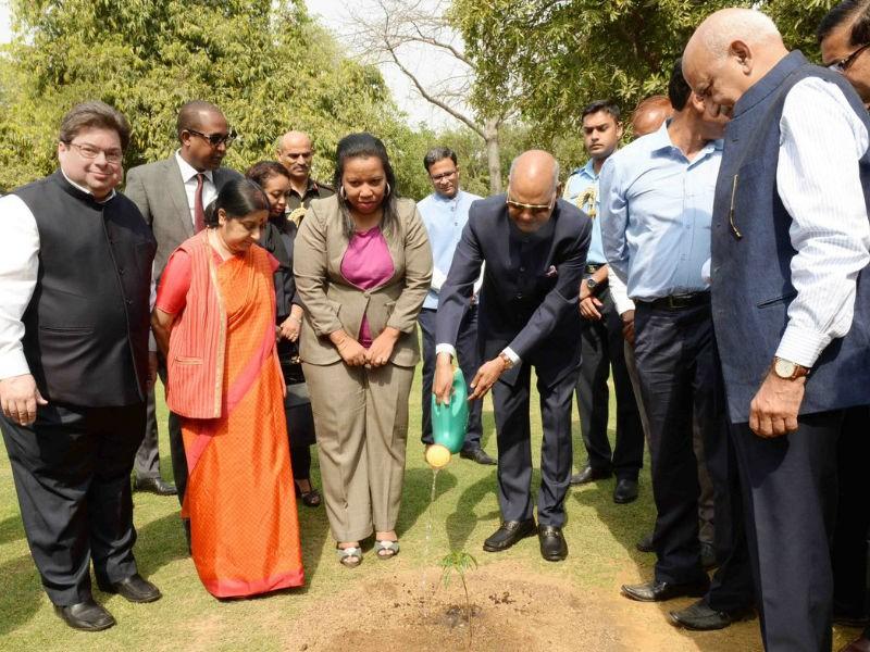 President Ram Nath Kovind,Ram Nath Kovind,Baobab sapling,President plants Baobab sapling