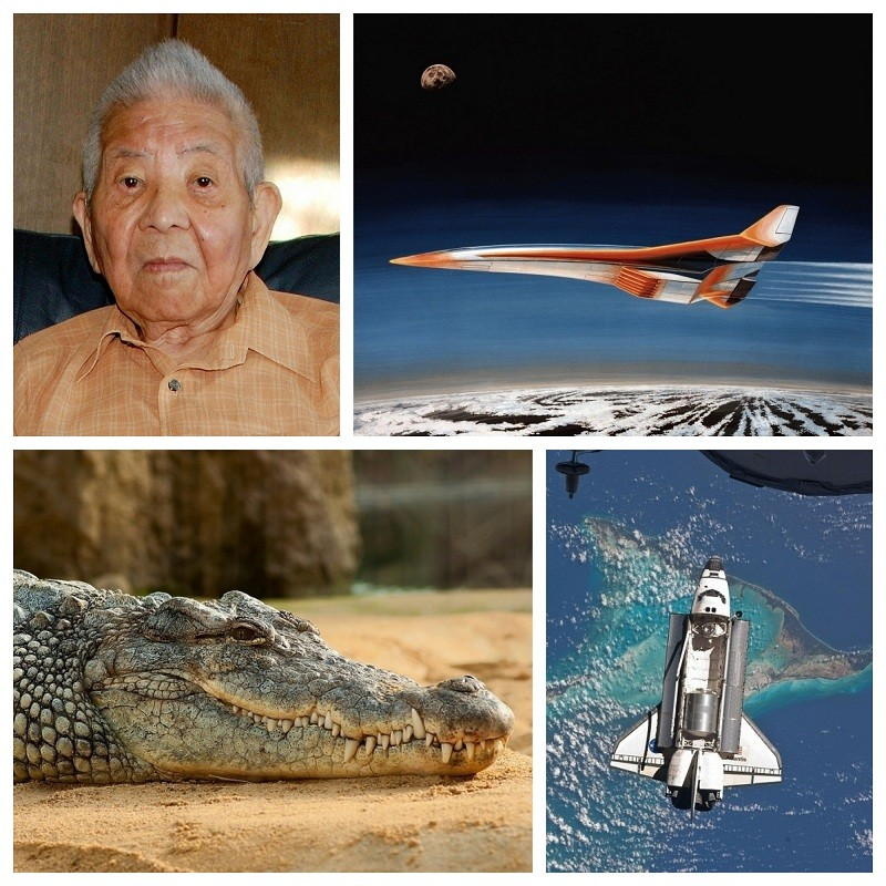 Nasa,nasa images,secret project,top secret missions,conspiracy,wild life,king of the jungle,lions,atlantis,Mickey mouse