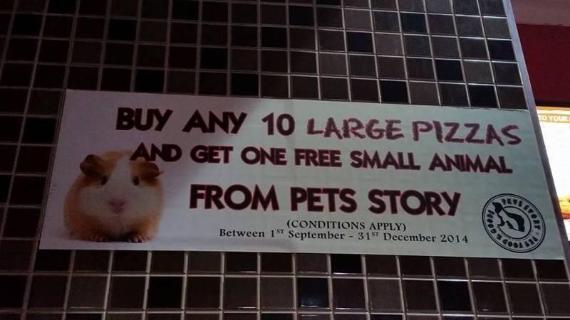 Pizza Hut's hamster campaign fails