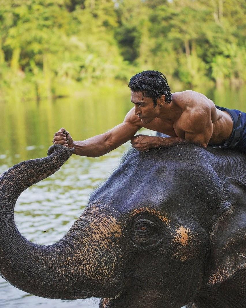 Vidyut Jamwal,actor Vidyut Jamwal,World Environment Day,World Environment Day 2018,Junglee,Junglee actor,Junglee actor Vidyut Jamwal