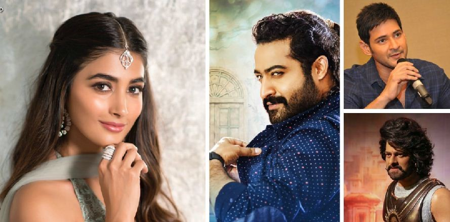 Pooja Hegde to Romance Prabhas, Jr NTR and Mahesh Babu