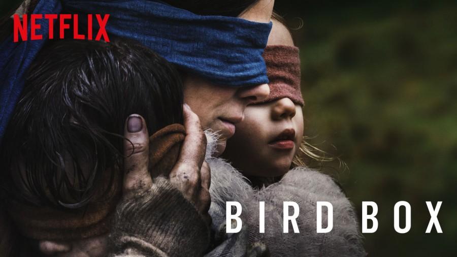 Bird Box,Bird Box director,Bird Box story,Bird Box netflix,Bird Box Movie,Sandra Bullock,Sandra Bullock Bird Box,Netflix,Netflix Bird Box,Bird Box  Challenge,what is bird box challenge