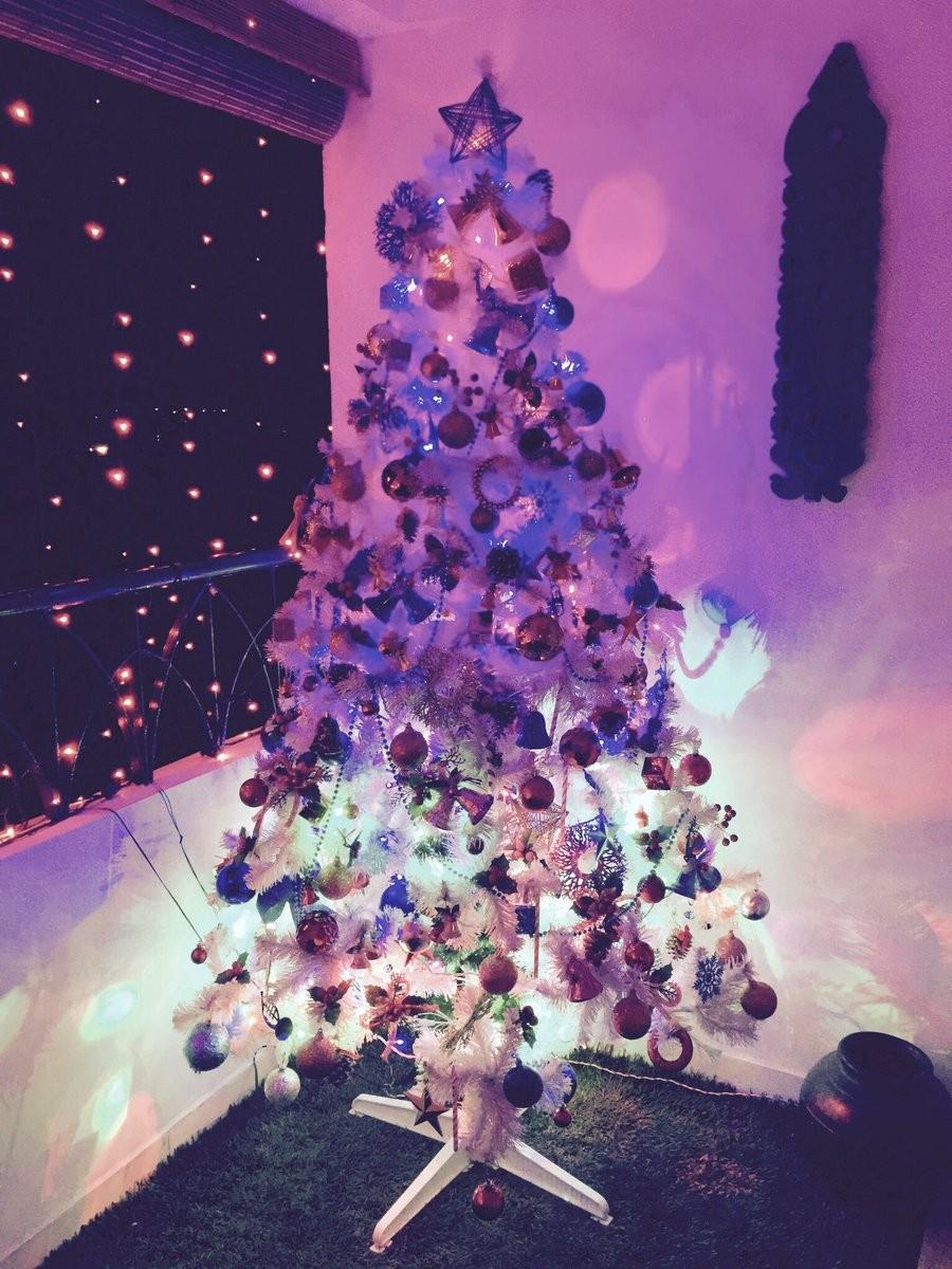 Nayanthara,Anirudh Ravichander,Soundarya Rajnikanth,Aishwaryaa. R. Dhanush,Christmas festival,Christmas,Merry Christmas festival,Christmas celebrations,Celebs celebrates Christmas,Christmas celebrations pics,Christmas celebrations images,Christmas celebra