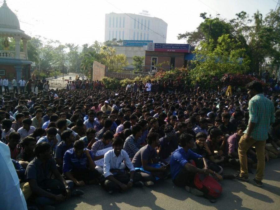 Jallikattu,Jallikattu protest,Chennai's Marina beach,Marina beach,bull-taming sport,PETA,Ban PETA