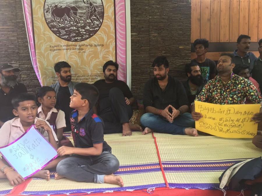 Jallikattu protest,jallikattu protests,Simbu,actor Simbu,Silambarasan,Simbu at Jallikattu protest,actor Simbu at Jallikattu protest