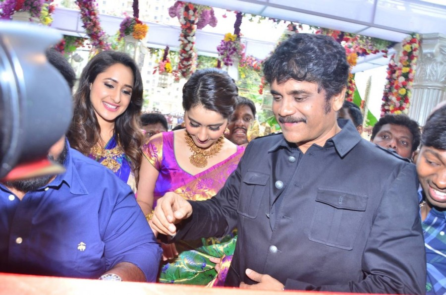 Nagarjuna,Raashi Khanna,Pragya Jaiswal,South India Shopping Mall,Nagarjuna Akkineni