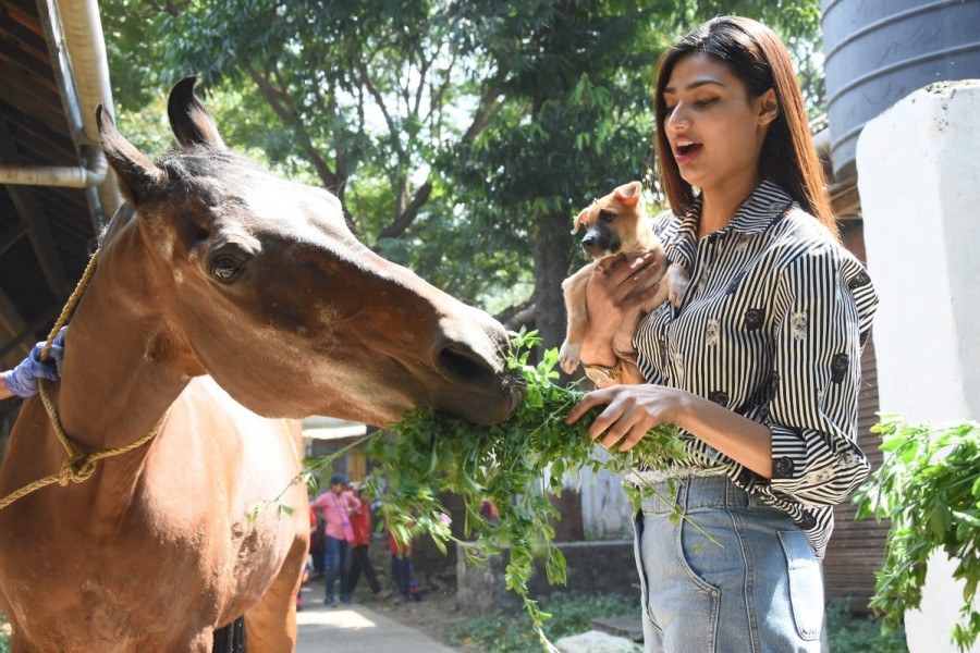 Athiya Shetty,actress Athiya Shetty,The Bombay Society for the Prevention of Cruelty to Animals,Cruelty to Animals