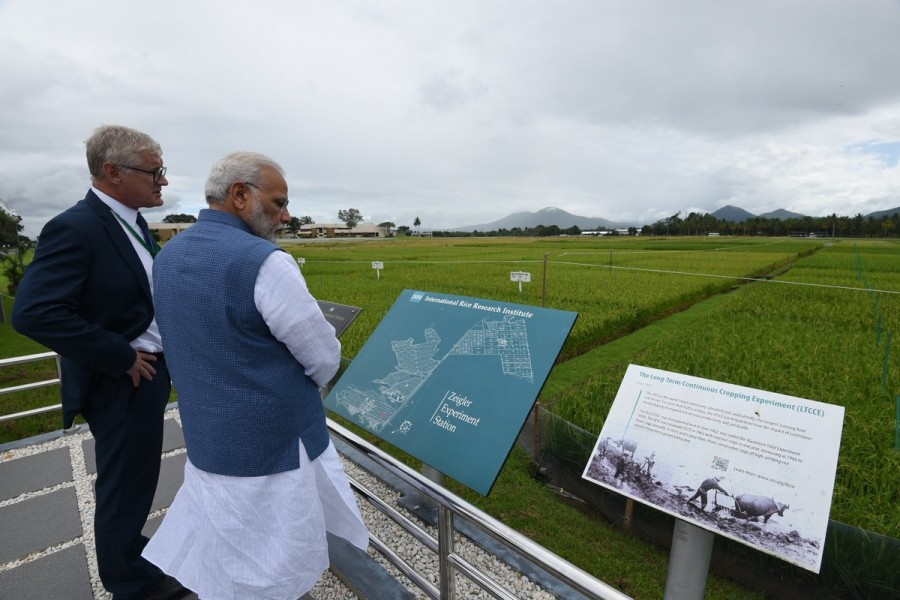 PM Narendra Modi,Narendra Modi,Narendra Modi in Philippines,Modi in Philippines,IRRI,International Rice Research Institute