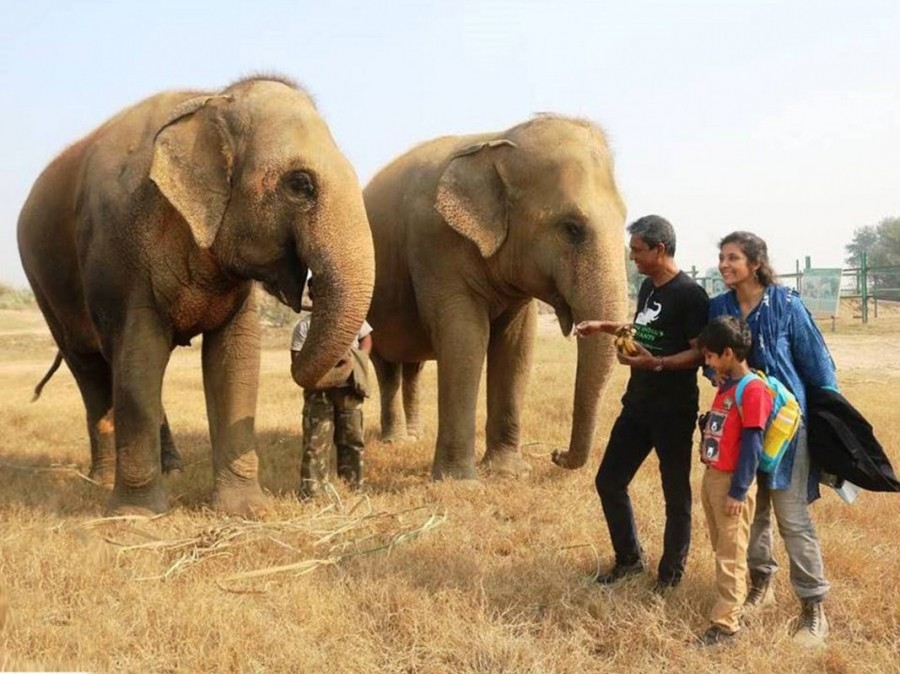 Adil Hussain,actor Adil Hussain,Life of Pi,Wildlife SOS Elephant Conservation