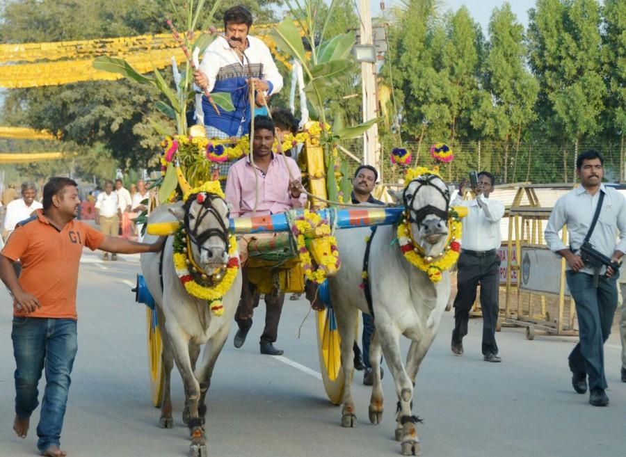 Nandamuri Balakrishna,Balakrishna,actor Nandamuri Balakrishna,Balakrishna celebrates Sankranthi,Sankranthi