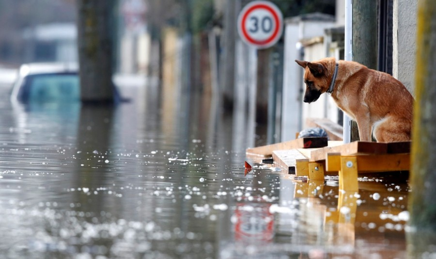 Paris under water,Paris flooded,Seine bursts,Paris flooded after heavy rain,Paris heavy rain,heavy rain in Paris