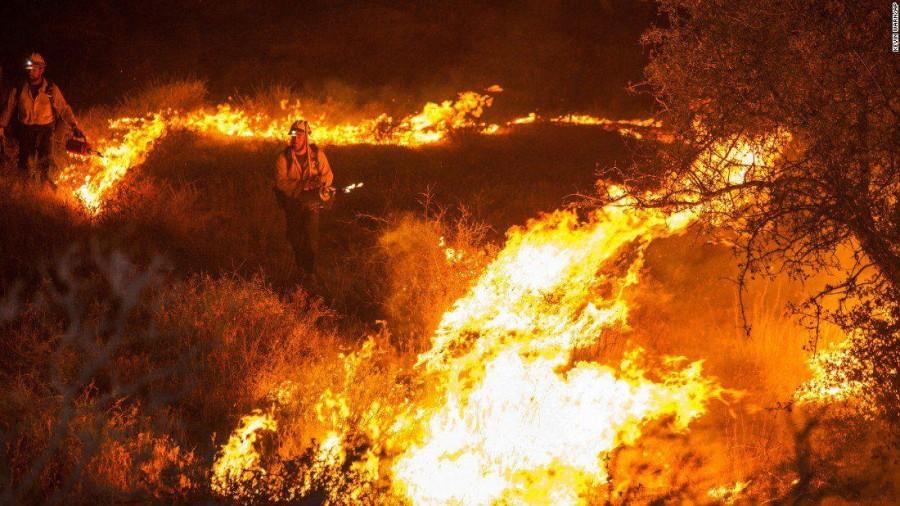 Theni forest fire,Theni forest,Theni fire,Kurangani hills,Theni forest fire pics,Theni forest fire images,Kurangani Hills in Theni district