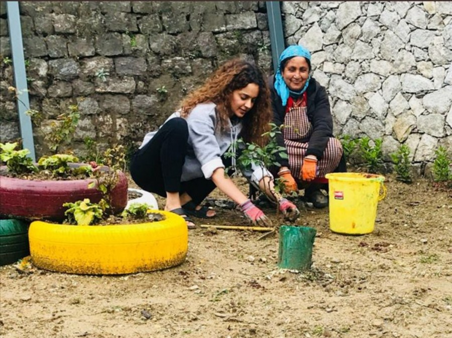 Kangana Ranaut,actress Kangana Ranaut,Kangana Ranaut birthday,Kangana Ranaut birthday celebration,Kangana Ranaut plants saplings,Kangana Ranaut plants saplings in Manali