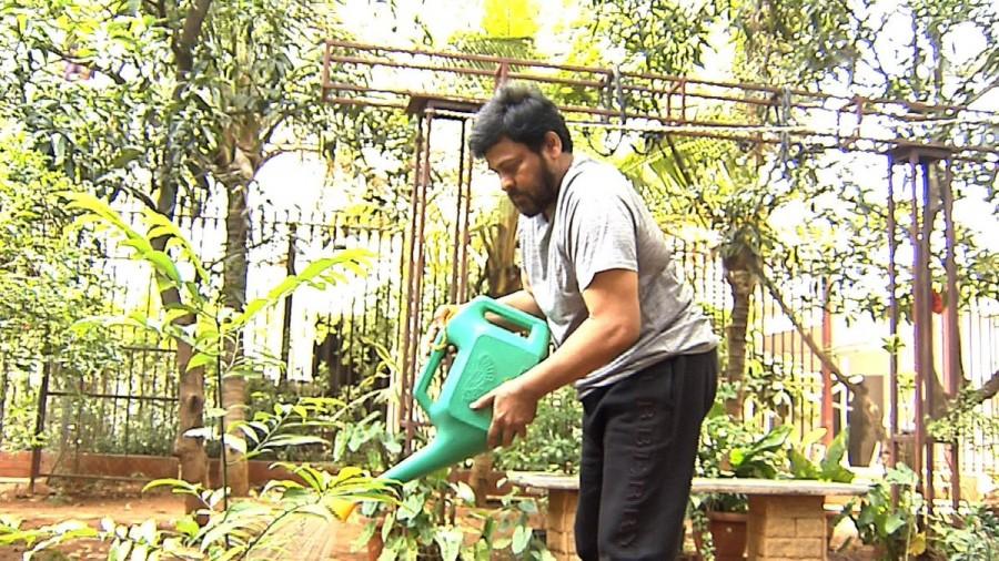 Mega Star Chiranjeevi,Mahesh Babu,Chiranjeevi,Sachin Tendulkar,KT Rama Rao's Green Challenge,Green Challenge