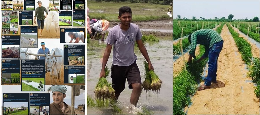 After watching Maharshi, viewers headed to villages to take up weekend farming