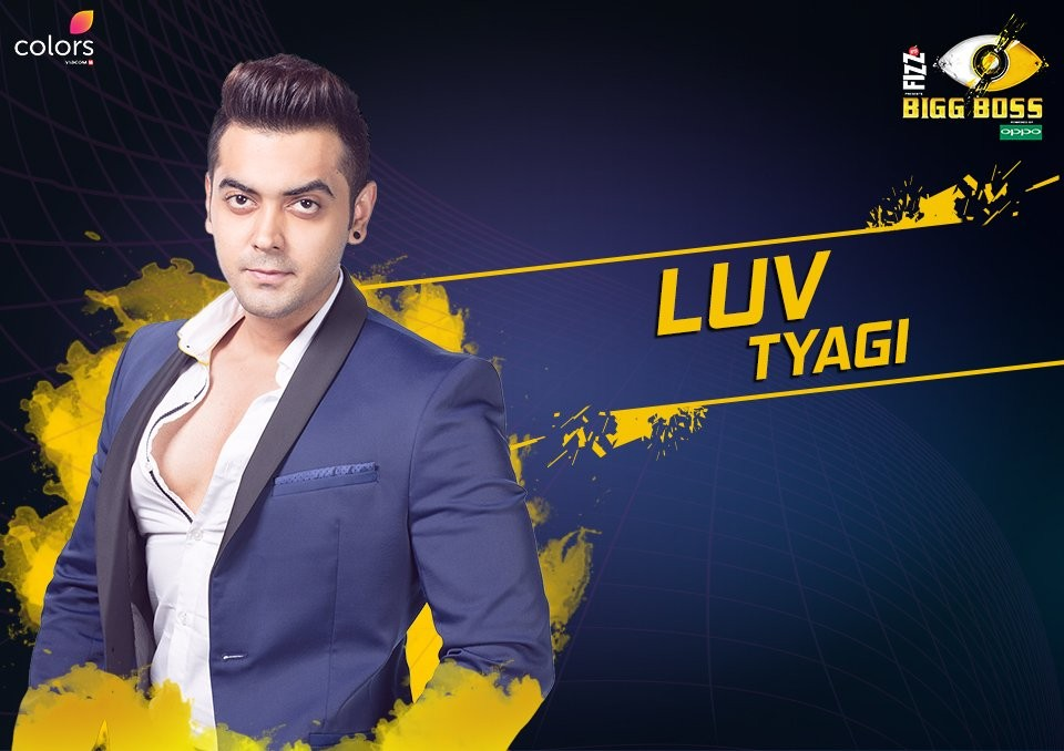 Bigg Boss 11 Contestants List With Profiles And Photos