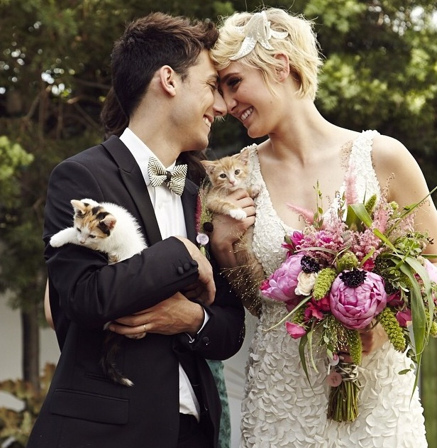 Ultimate cat theme wedding is just too purr fect photos video ultimate cat theme wedding is just too purr fect photos video ibtimes india junglespirit Gallery