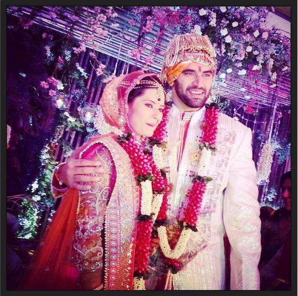 'Chennai Express' Baddie Nikitin Dheer Marries TV Actress