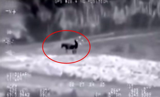 Hoax Buster: 'US Drone Captures ISIS Militant Having Intercourse with  Donkey' Video Fake - IBTimes India