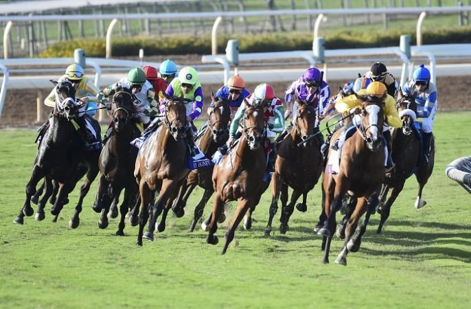 Legal horse race betting online young man on campus bet