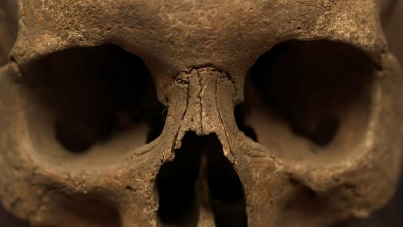Rare Black Death 'plague pit' discovered at 14th-century abbey