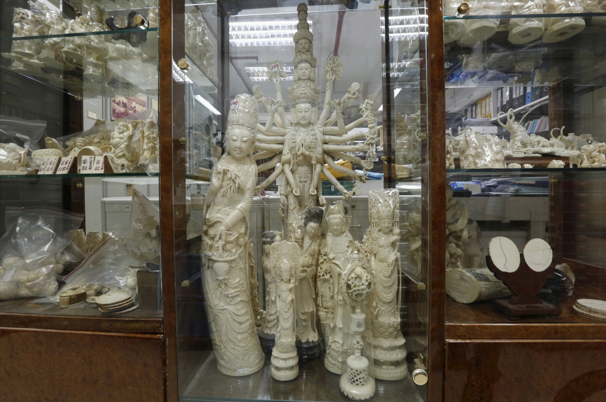 World Auto Sales >> Ivory trade ban: Can China crush its 'intangible cultural heritage'? - IBTimes India