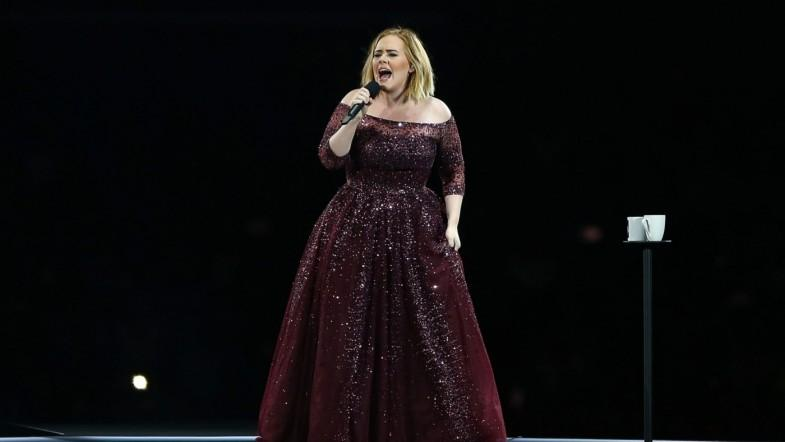 Adele attacked by mosquito swarm at Brisbane concert