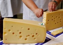 cheese, cheddar, creamy cheese, breast cancer, women, health,