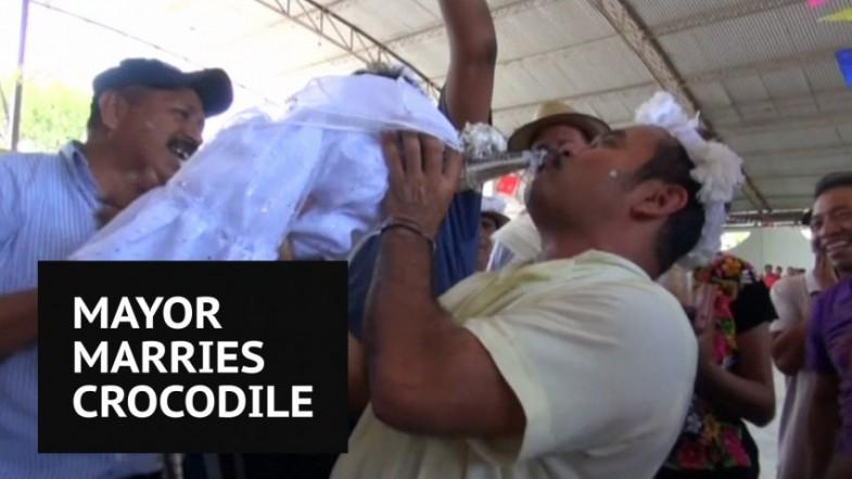 Mexican mayor weds crocodile called The Princess