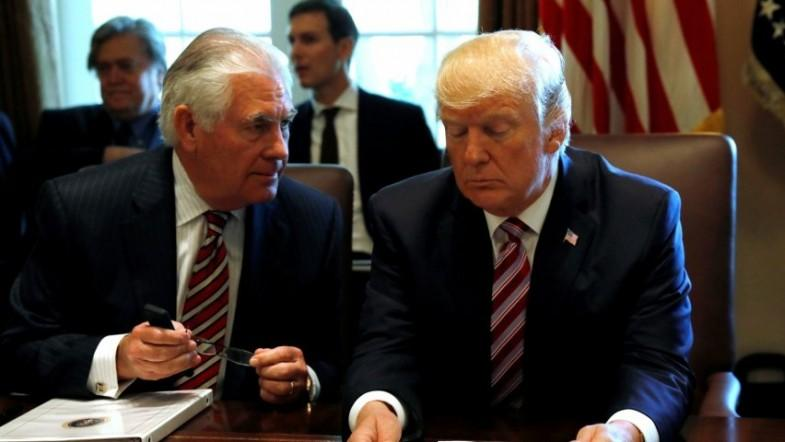 Tillerson comfortable working with Trump: We have a good relationship