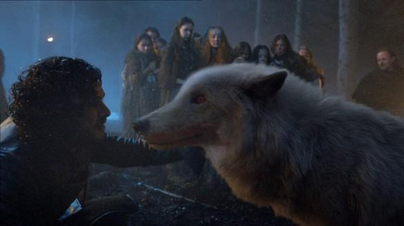Jon Snow with his direwolf